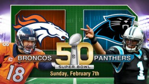 Super Bowl 50 image